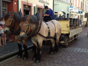horse carriage in small street